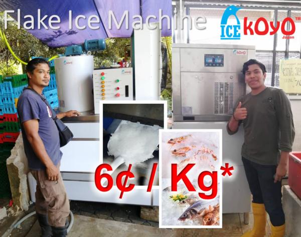 Koyo Flake Ice Machine